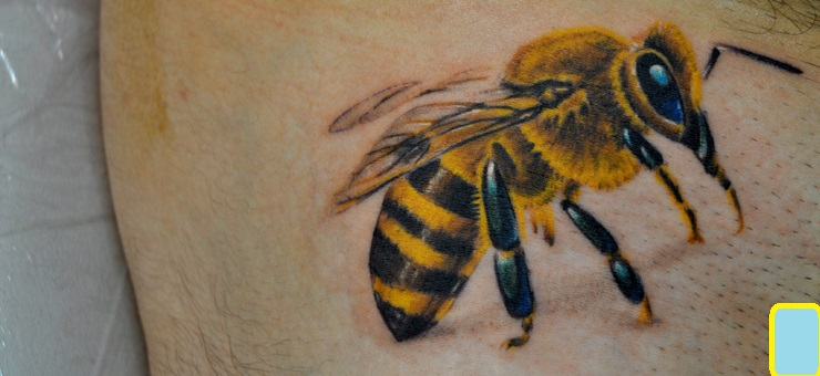 Honey Bee Tattoo Realistic