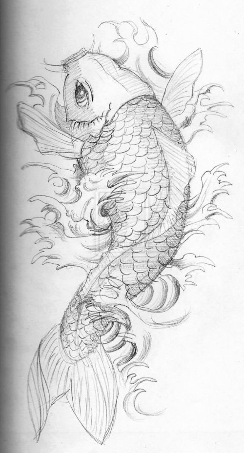 small resolution of 30 nice carp fish tattoo designs