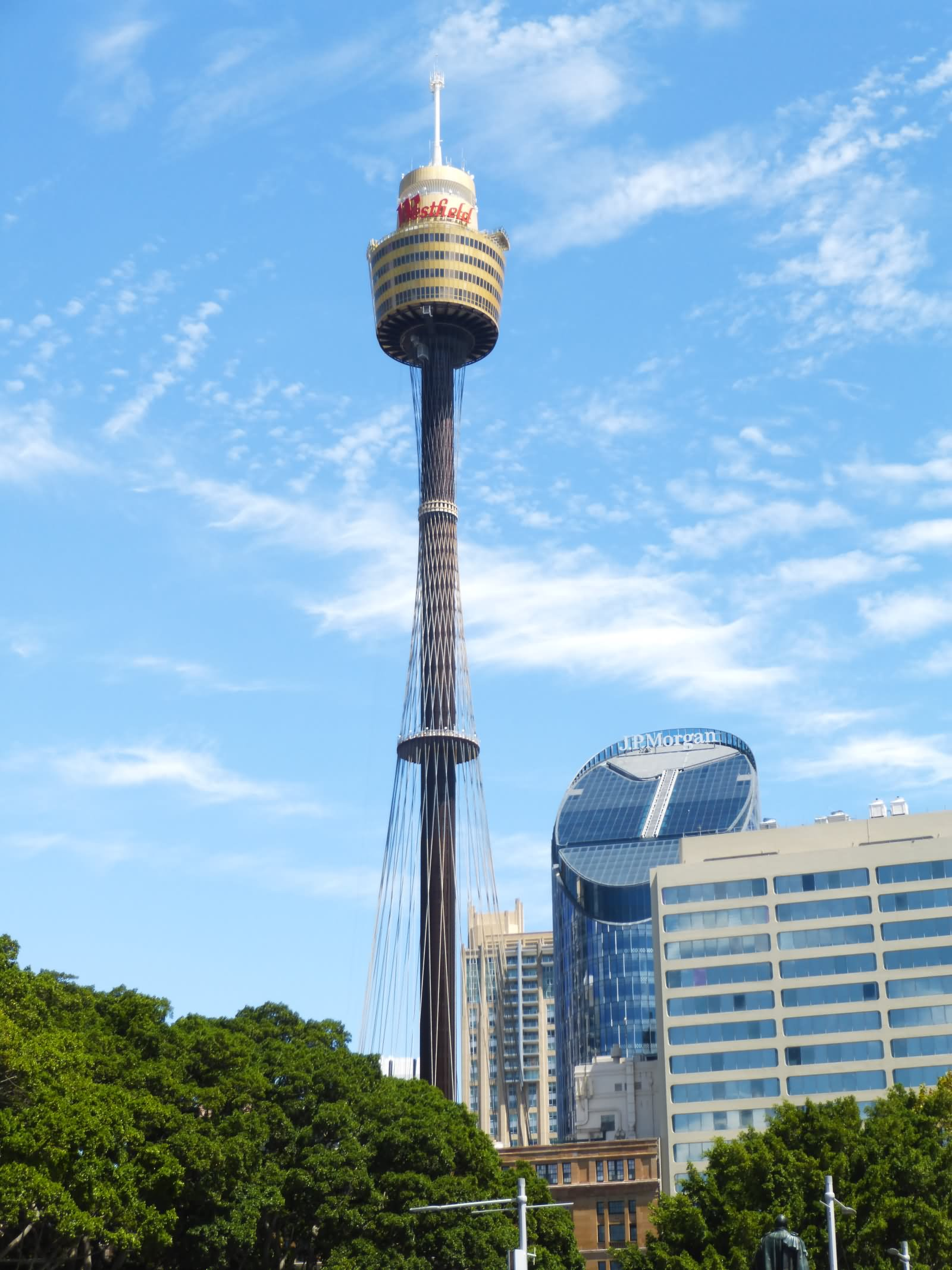 Awesome Sydney Tower Picture