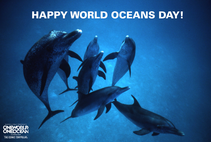 20 Beautiful World Ocean Day Poster Images And Pictures