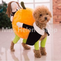 40 Very Funny Pet Costume Pictures