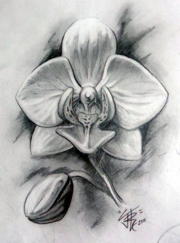 Black And White Orchid Tattoos