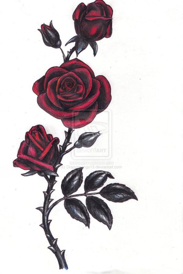 Gothic Rose Tattoos And Design Ideas