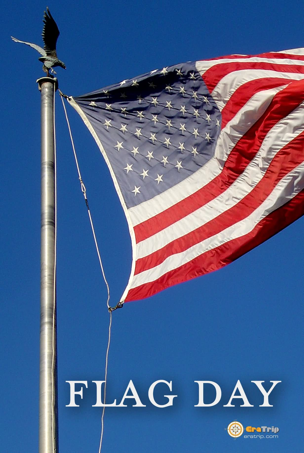 40 Happy Flag Day Greeting Pictures And Images