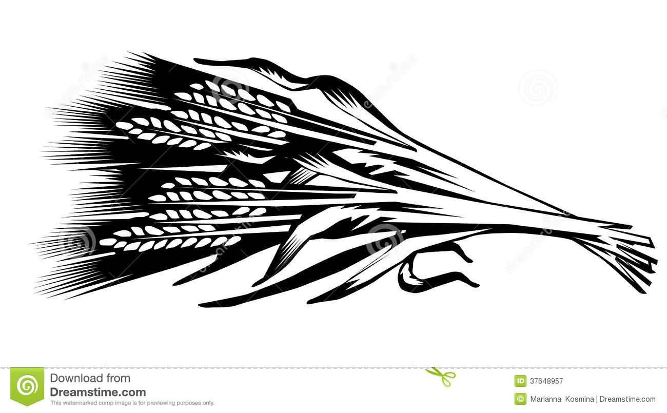 9 Simple Wheat Tattoo Designs