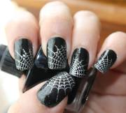 beautiful spider web halloween