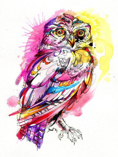 Indian Girl Wallpapers For Desktop Sketch 60 Watercolor Owl Tattoos Collection