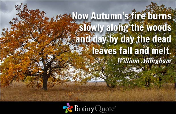 Fall Cabin The Woods Wallpaper 61 Best Day Quotes And Sayings
