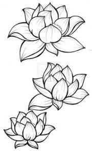 black outline three lotus flowers