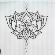 wonderful black outline lotus flower