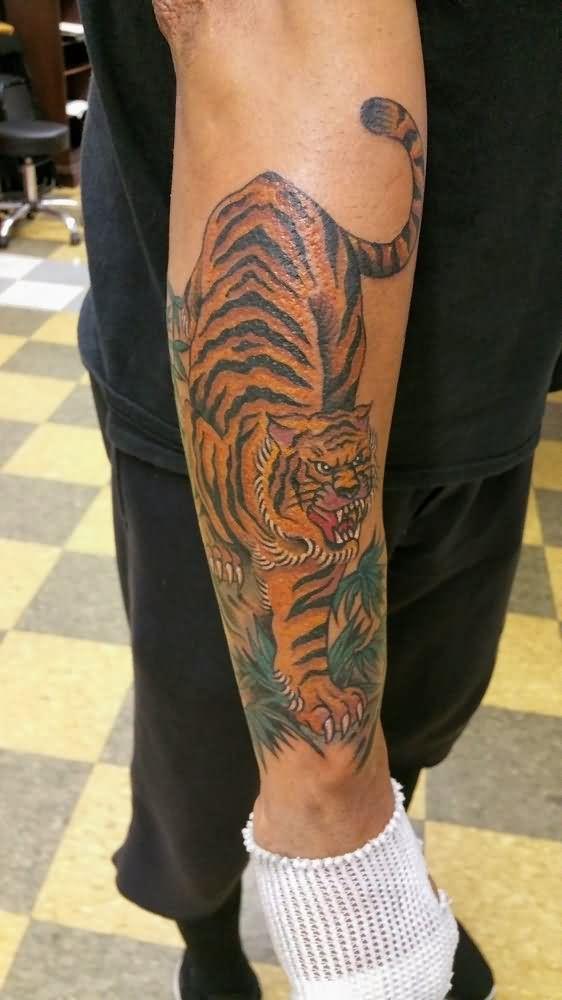 tiger tattoos forearm