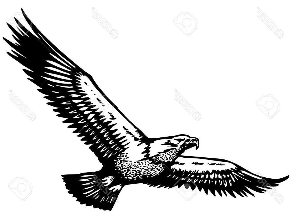 110 Best Flying Eagle Tattoos Amp Designs With Meanings