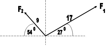What is the magnitude and direction of the resultant force.