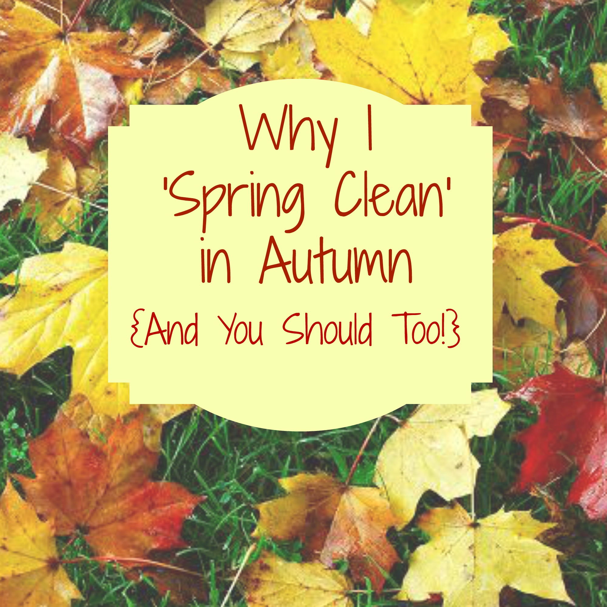 Why You Should Spring Clean In Autumn