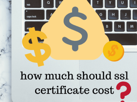 How much should an SSL certificate cost?