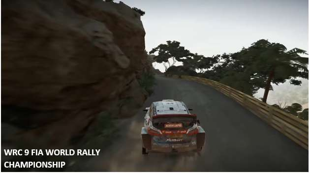 WRC fia 9 world rally championship