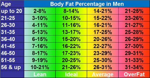 Average Percent Body Fat Men Women Body Composition