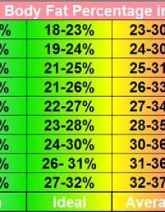 Body fat percentage in women chart also average percent men composition explained rh askthetrainer