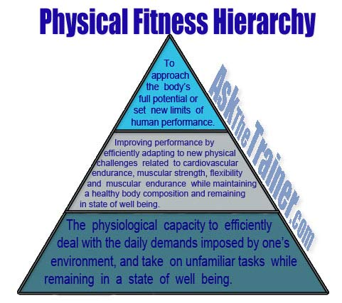hierarchy definition of physical fitness