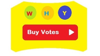 Easiest-Way-to-Buy-Votes-Online