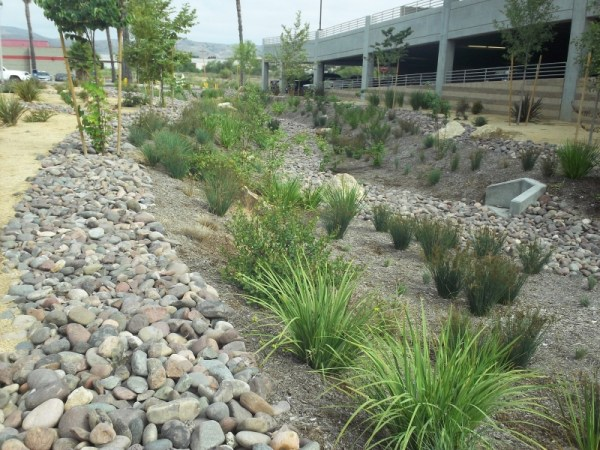 stormwater management creative