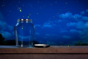 Fireflies and a mason jar