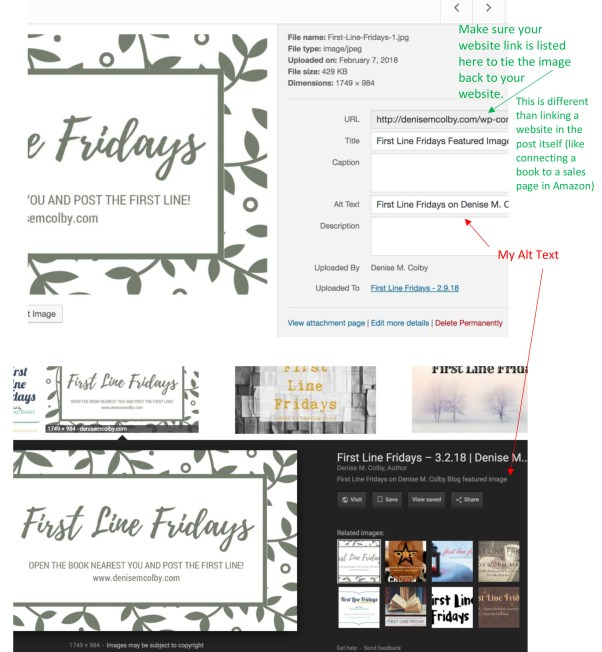 First Line Fridays Alt Text Search Example by Denise M. Colby for A Slice of Orange Blog Post