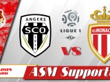 SCO-ASM : Le groupe angevin