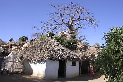 Tri Gash Cities Barentu Teseney Akordat Eritrea