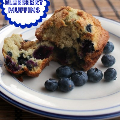 Easy Blueberry Muffin Recipe with Simple Streusel Topping!