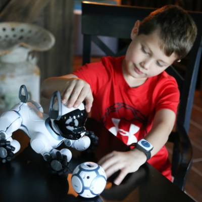 Powering Imagination with WowWee CHiP & COJ Toys