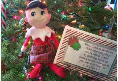 Instructions Elf On The Shelf