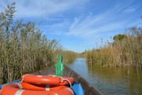 Parco Naturale dell'Albufera: un giro in barca fra natura e risaie