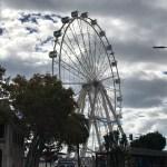 Mirador Princess: uno sguardo su Málaga a 360 gradi