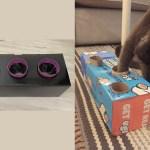 Feline Diy Enrichment Aspca