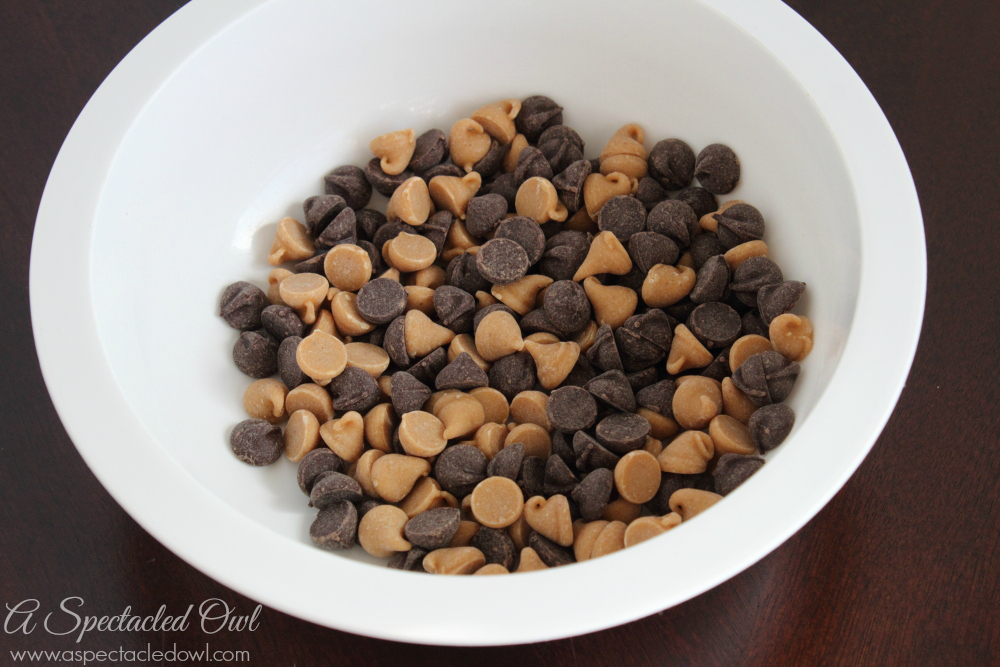 Chocolate Peanut Butter Cheese Ball Recipe