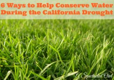 6 Ways to Help Conserve Water During the California Drought