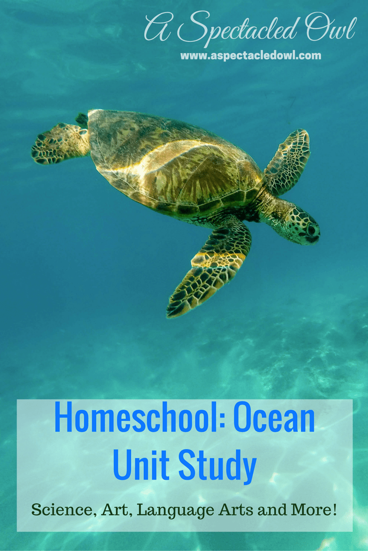 "Homeschooling: Ocean Unit Study - This Ocean Unit Study can be adapted for all grade levels, Preschool through 6th. I've included Science, Art, Literature, and ""Everything Else"". For Math, you can do any type of counting project with fish, dolphins, or any sea creature!"