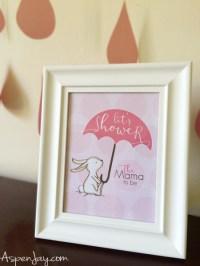 Little Bunny Baby Shower - Aspen Jay