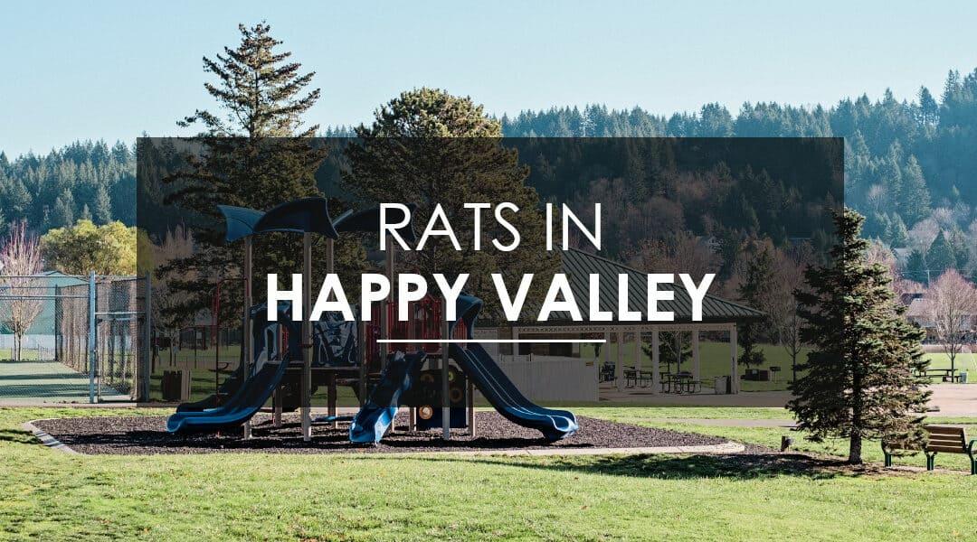 Rat Control in Happy Valley   Aspen Pest Control