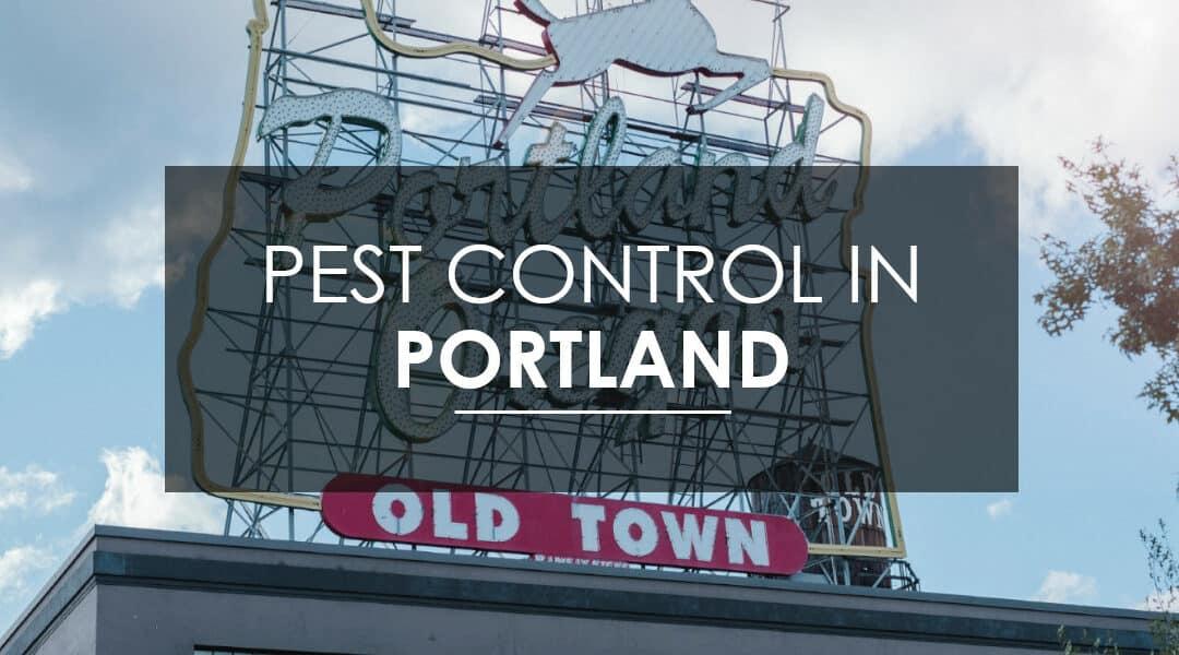 Pest Control in Portland, OR   Aspen Pest Control