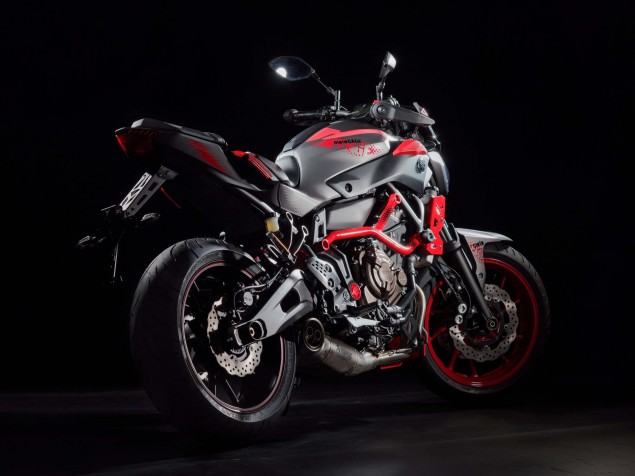 2015-Yamaha-MT-07-Moto-Cage-28