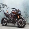 Chappie-Triumph-Tiger-Concept-Jakusa-Design-02