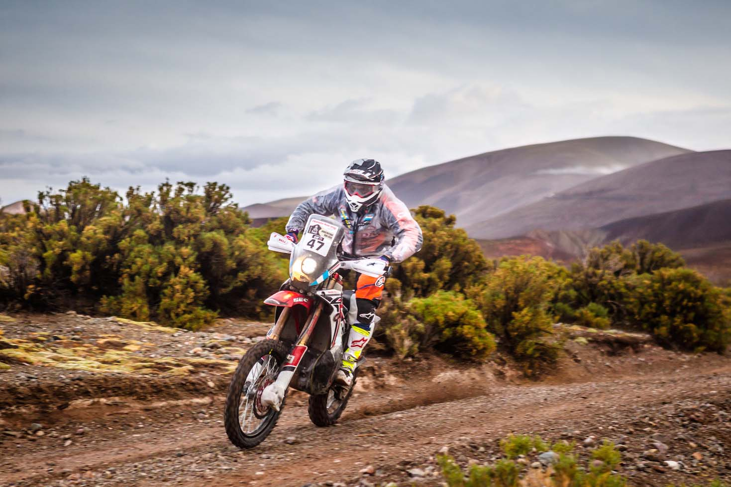 Ktm Dakar Rally Racers