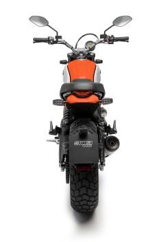 2019-Ducati-Scrambler-Icon--05