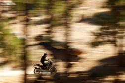 2020-Harley-Davidson-Pan-America-14
