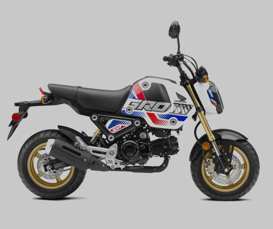 The Updated Honda Grom Finally Arrives in the USA as a 2022 Model