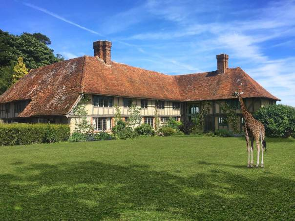 Giraffe Hall at Port Lympne Hotel & Reserve