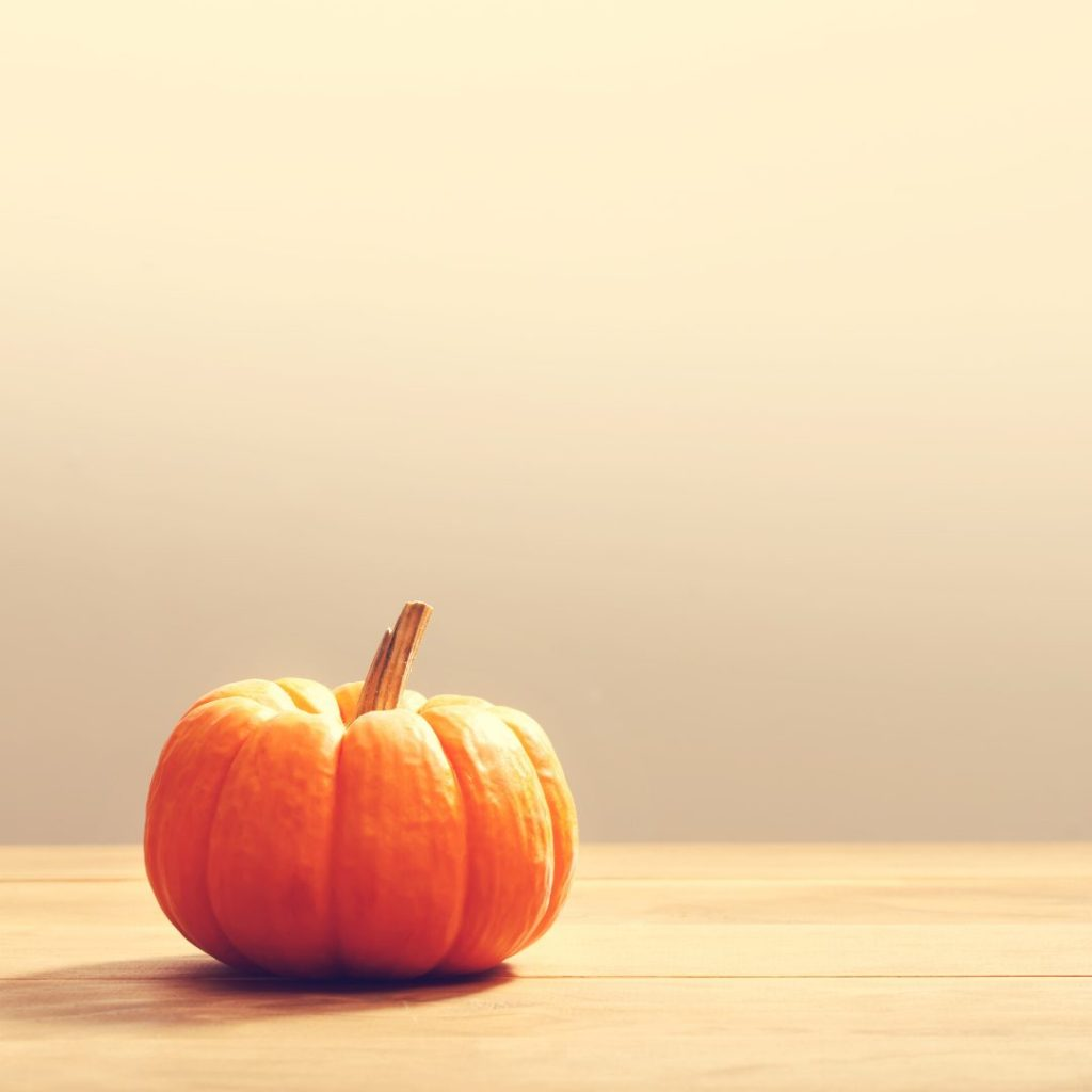 Image of a small pumpkin