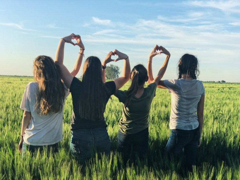 4 women standing in a row with their backs to the camera. They are standing in a field of wheat and have their hands interlinked above their heads to create heart shapes with their hands.